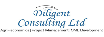Diligent Consulting Ltd